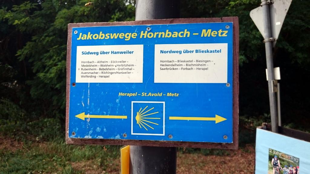 Jakobsweg Wald WanderVeg Domibility Saarländischer Jakobsweg