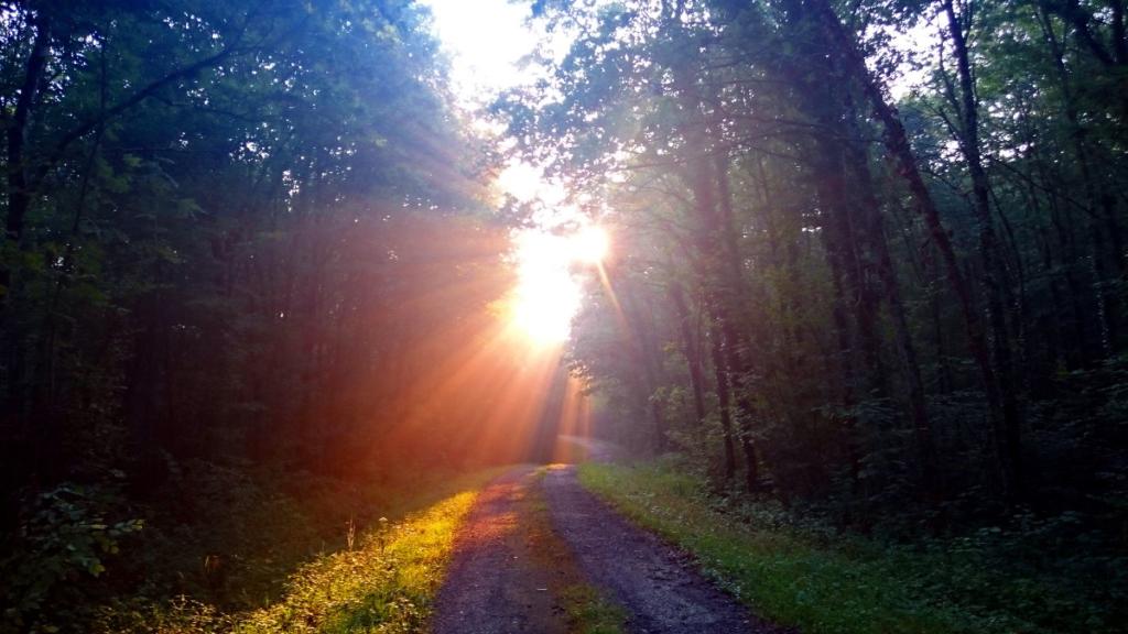 Wenn die Sonne dich mit einem solchen Lächeln begrüßt, kann der Tag nur gut werden #wanderveg #jakobsweg #tagebuch