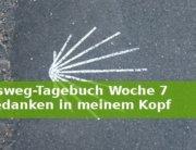 Jakobsweg-Tagebuch Woche 7